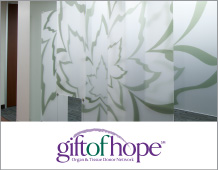 Donor History Product Walls Case Study Gift of Hope