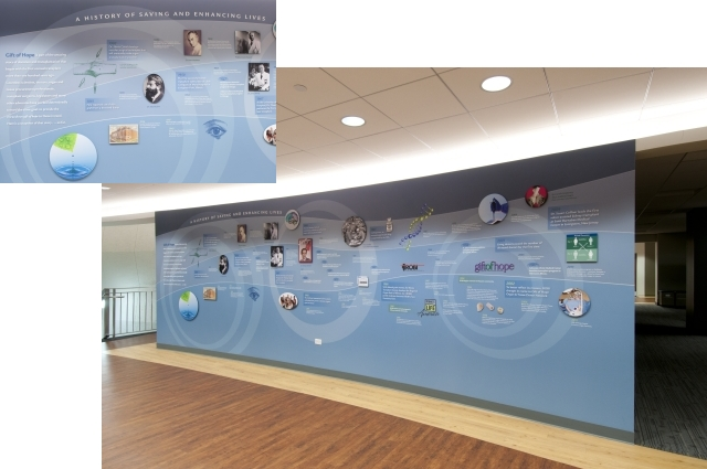 Gift of Hope Timeline Wall