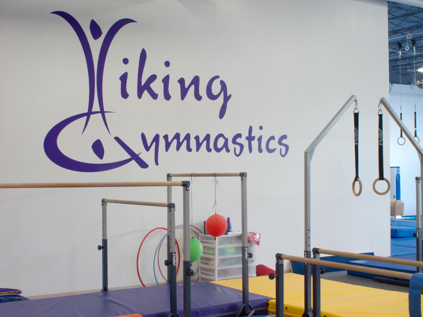 Viking Gym Graphics Wall
