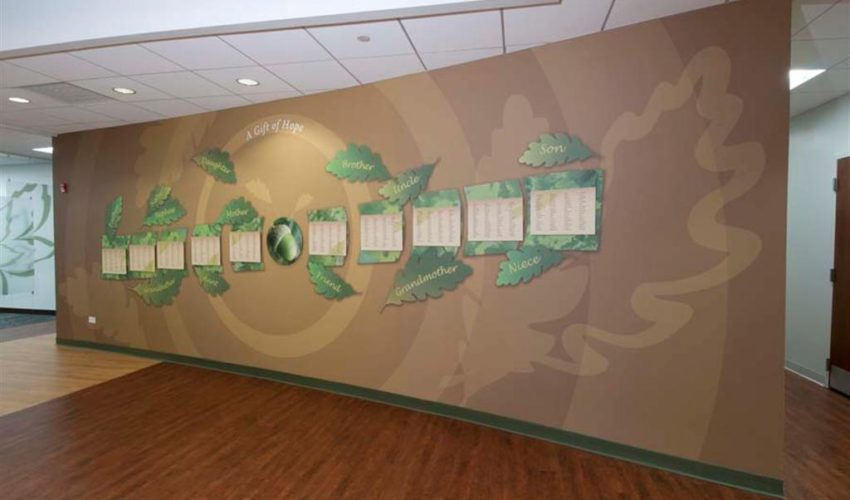 Marvelous Professionally Installed Donor Walls And History